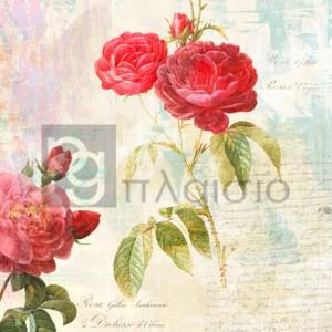 Eric Chestier - Redouté's Roses 2.0 - II