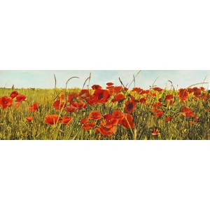 Luca Villa - Poppy Field