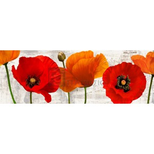 Jenny Thomlinson - Summer Poppies