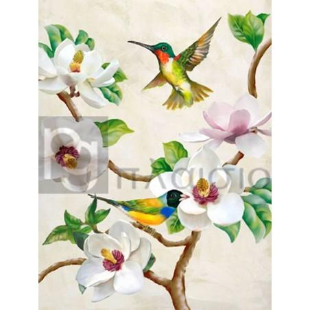 Terry Wang - Magnolia and Birds
