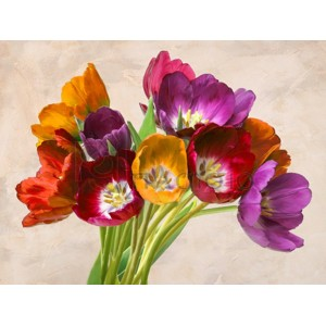 Teo Rizzardi - Tulipani danzanti