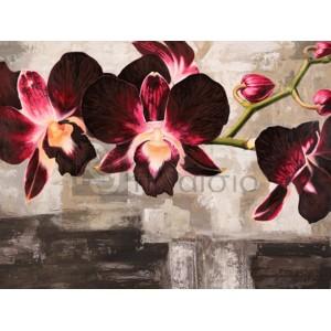 Shin Mills - Velvet Orchids