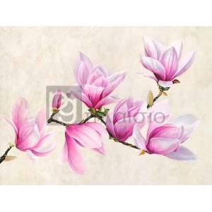 Luca Villa - Ramo di magnolia