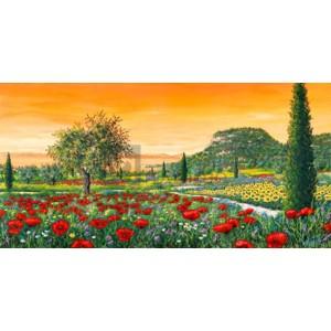 Tebo Marzari - Le colline in fiore
