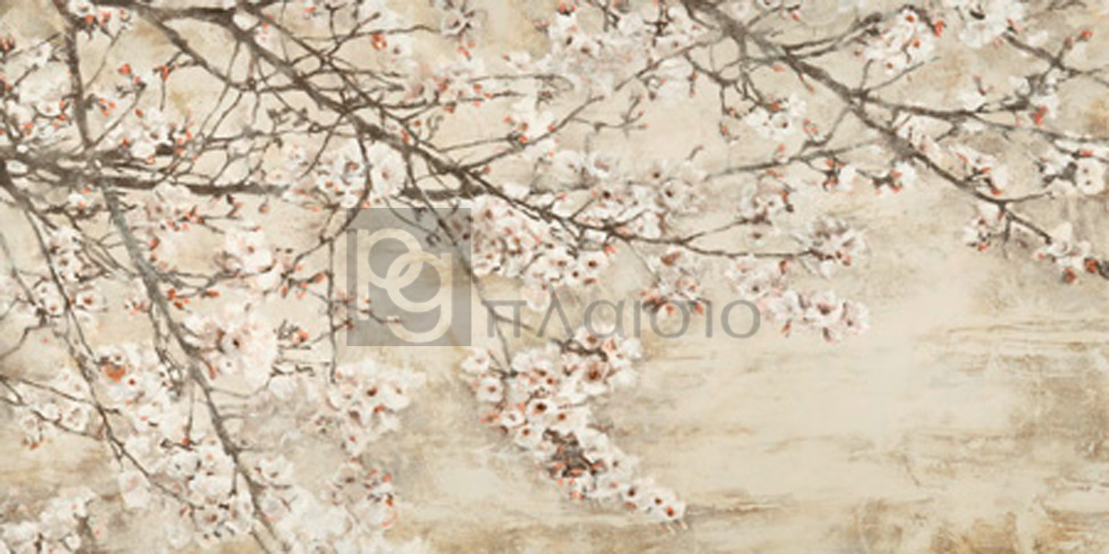 Silvia Mei - Ciliegio in fiore
