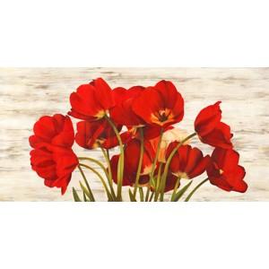 SERENA BIFFI - French Tulips