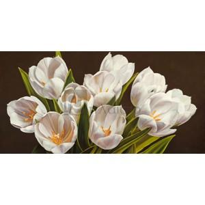 Serena Biffi - Bouquet di tulipani