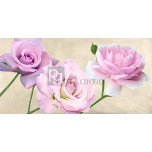 Serena Biffi - Rose classiche