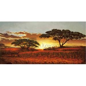 Madou - Memories of Serengeti
