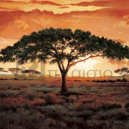Madou - Masai Tree