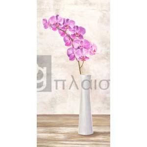 Shin Mills - Orchid Arrangement
