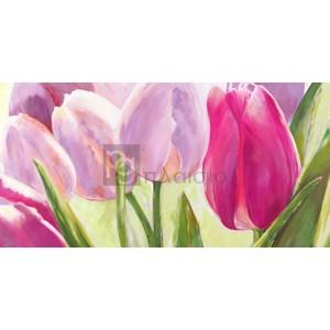 Leonardo Sanna - Tulipes