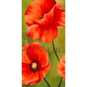 Luca Villa - Poppies in the wind I