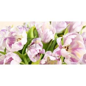 Luca Villa - Tulipes en Fleur