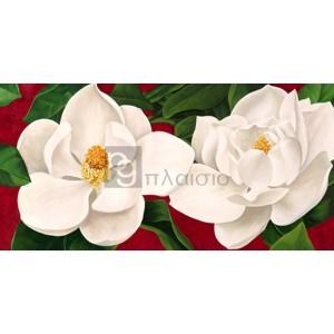 Luca Villa - Magnolie in fiore
