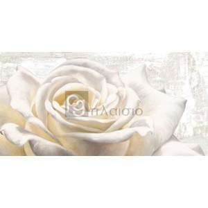 Jenny Thomlinson - White on White