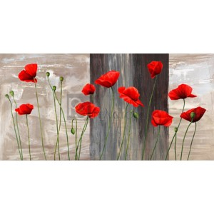 Jenny Thomlinson - Country Poppies