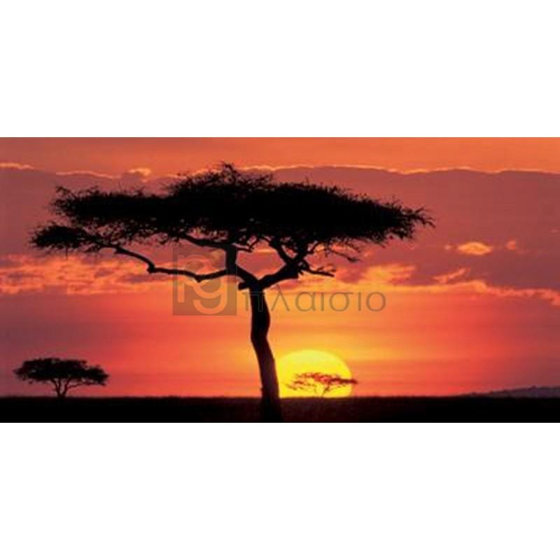 James Urbach - Masai Mar Plains, Kenya