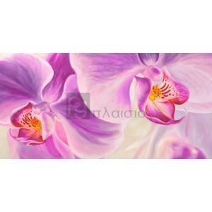 Cynthia Ann - Purple Orchids