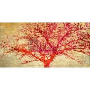 Alessio Aprile - Coral Tree