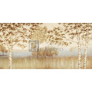 Neil Thomas - Birches in the Mist
