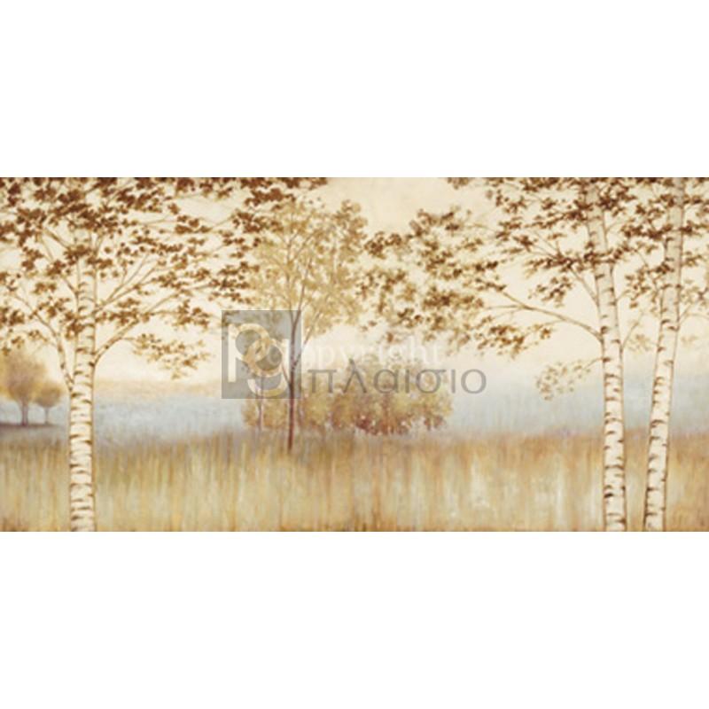Neil Thomas - Birches in the Mist