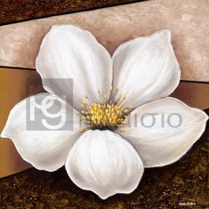 Άννα - Μαρία - Magnolia