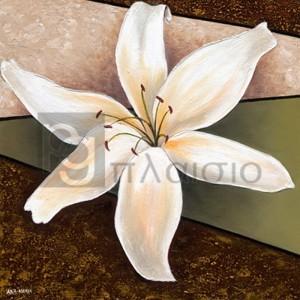 Άννα - Μαρία - Λευκός Κρίνος