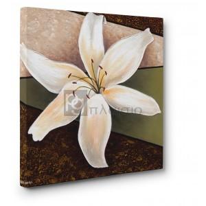 Άννα - Μαρία - White Lily