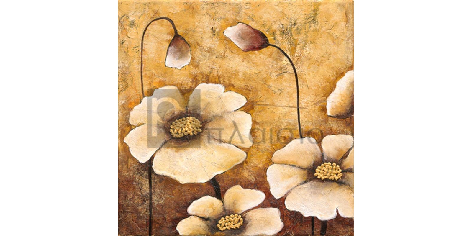Βαλέρια Κουσίδου - Λευκές Παπαρούνες I