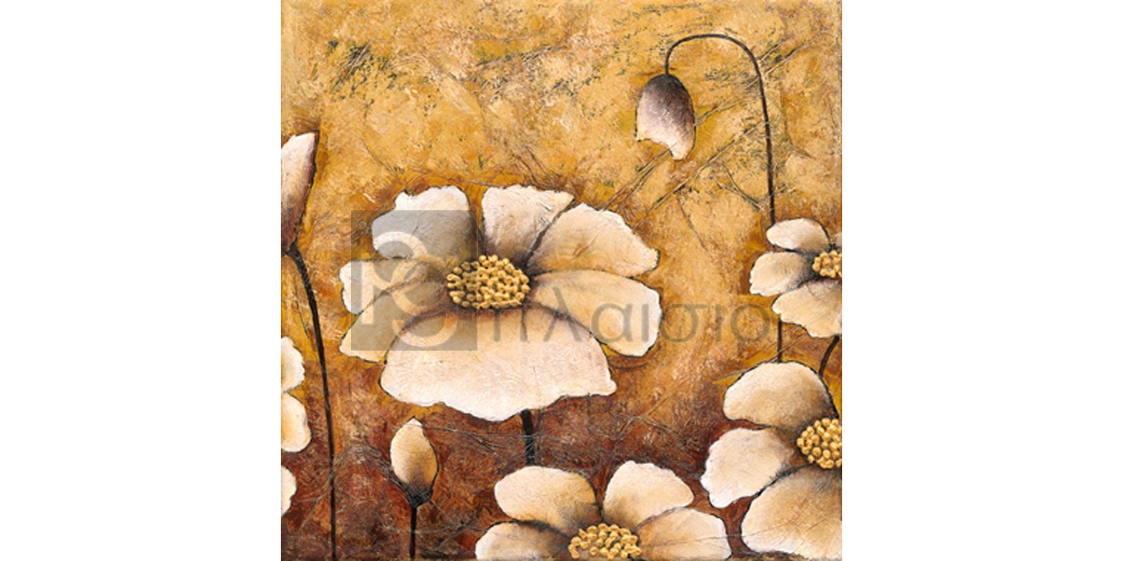 Βαλέρια Κουσίδου - Λευκές Παπαρούνες II