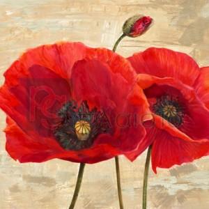 Cynthia Ann - Red Poppies (detail II)