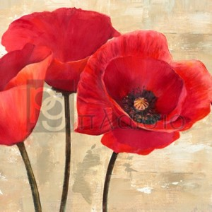 Cynthia Ann - Red Poppies (detail)