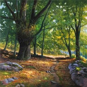 ADRIANO GALASSO - Luce nel bosco