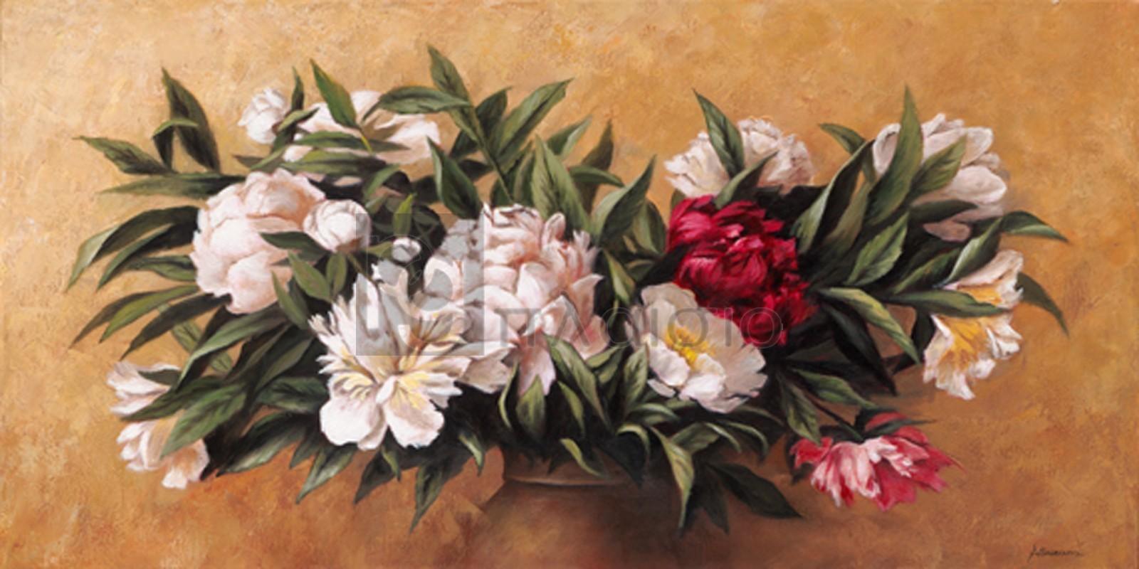 A.Susana - Λευκές και κόκκινες παιόνιες