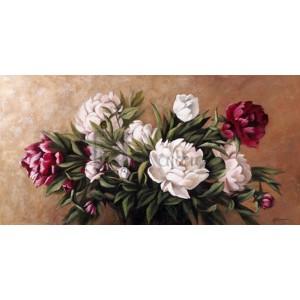 A.Susana - White and purple peonies