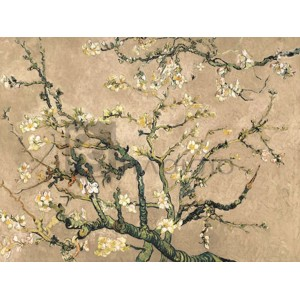 Vincent Van Gogh - Mandorlo in fiore (beige variation)