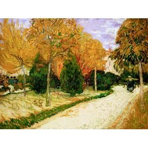 Vincent Van Gogh - Garden in Autumn