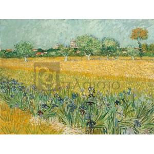 Vincent Van Gogh - Field with Irises near Arles