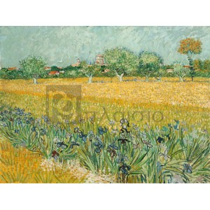 Vincent Van Gogh - Field with Irises near Arles
