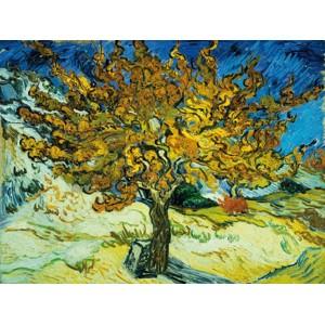 Vincent Van Gogh - Mulberry Tree