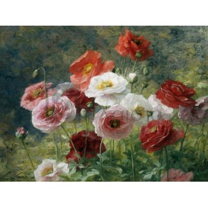 Louis Marie Lemaire - Poppies