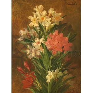 Pierre Adrien Chabal-Dussergey - Rot und weiß blühender Oleander