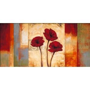 Brian Francis - Poppies in Rythm I