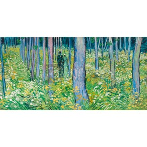 Vincent Van Gogh - Undergrowth with two figures