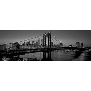 Richard Berenholtz - Manhattan Bridge and Skyline