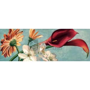 Eva Barberini - Luce e colore II