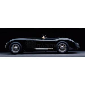 Don Heiny - 1951 Jaguar C-Type