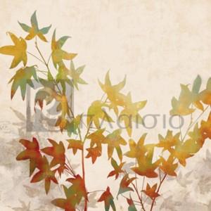 Erin Lange - Turning Leaves I