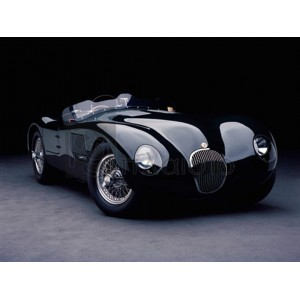 Don Heiny - 1951 Jaguar C-Type